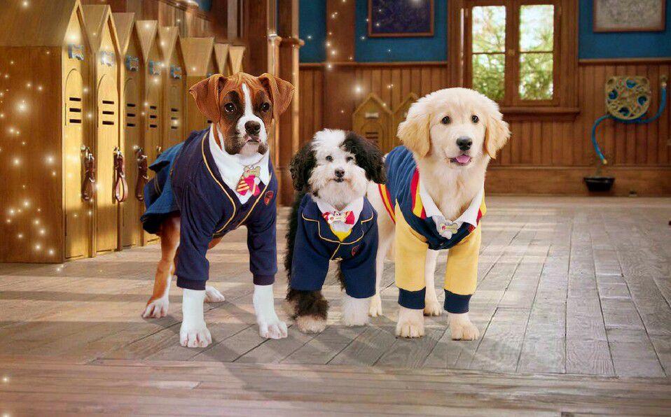 Películas para amantes de los perros en Netflix. (Foto: Netflix).