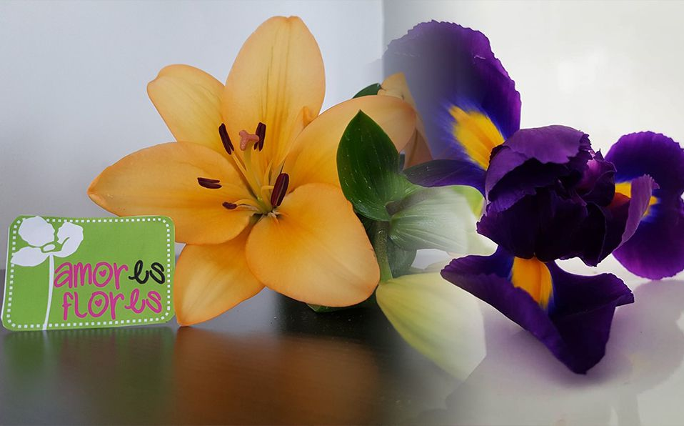 Amores Flores, regala amor para mamá