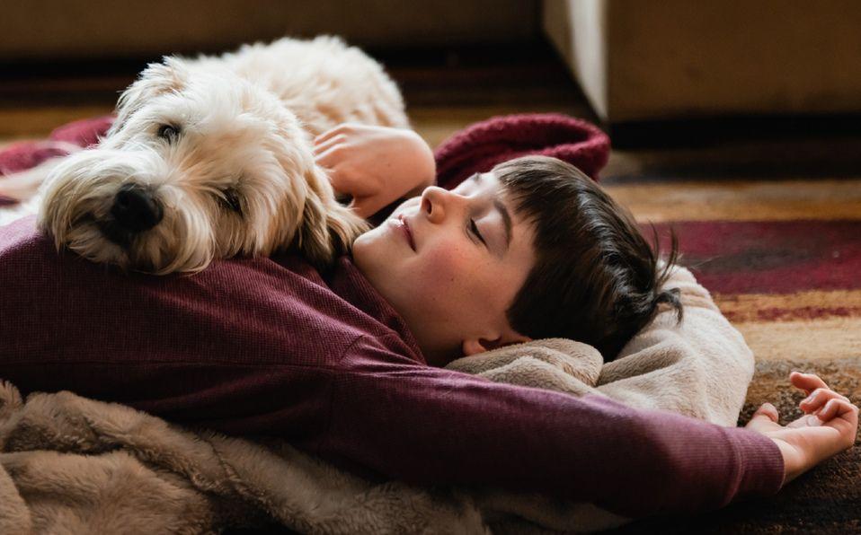 Los perros además de llenarnos de felicidad, ven mucho más allá de lo que nosotros percibimos (Foto: Getty Images).