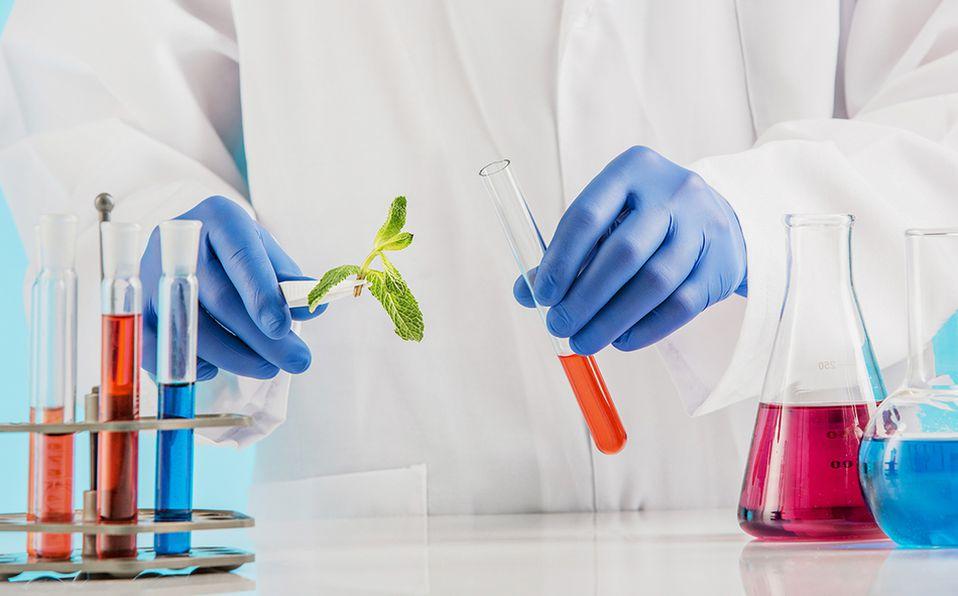 La biotecnología como disciplina surgió a principios del siglo XX en la industria alimentaria. Foto: Archivo