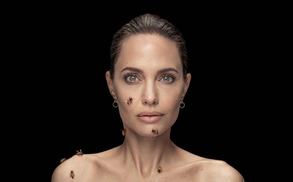 Angelina Jolie se cubre de abejas por una buena causa (Foto: National Geographic)