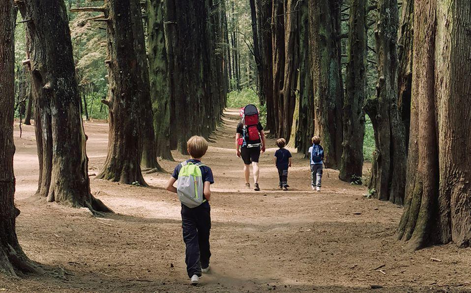 Recomendaciones para viajar con niños este día del niño