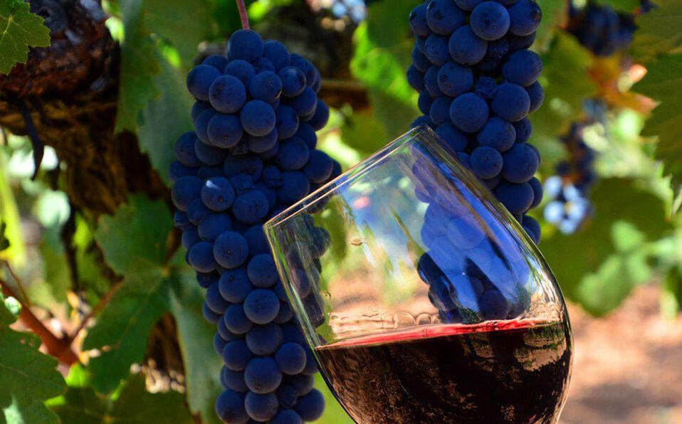 El vino tinto debe beberse a 18 grados (Fotos: cortesía).