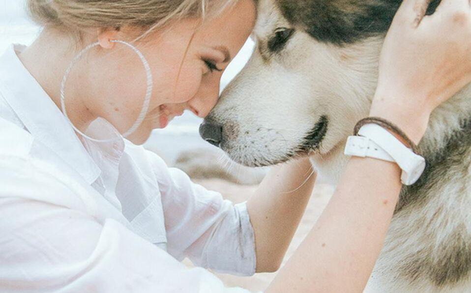 El ejercitarse acompañado de tu mascota, evitarás problemas crónicos de salud