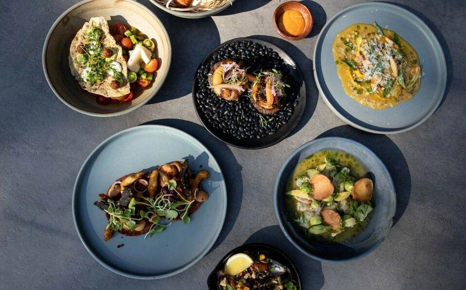 La oferta culinaria que se ofrece son sabores locales, frescos y sustentables con toques contemporáneos (Foto: IG @thompsonzihuatanejo).