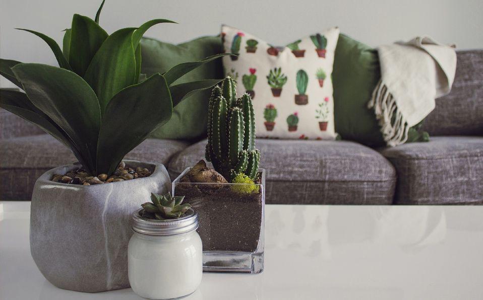 Cómo mantener una casa fresca este verano, según arquitectos. (Foto: Instagram).
