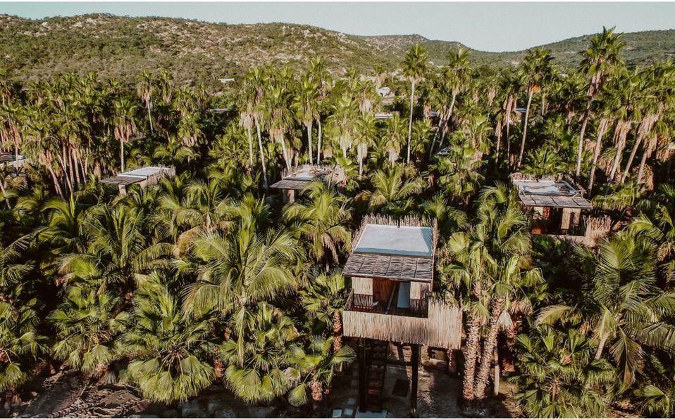 Tree Houses, un hotel en Los Cabos