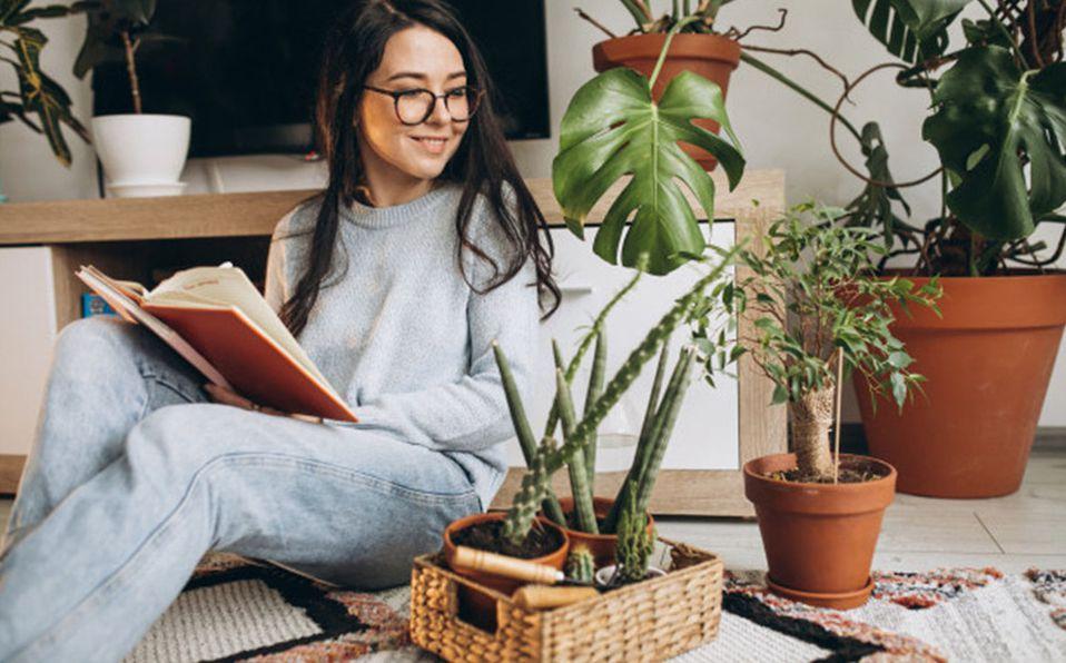Si eres la señora de las plantas, estas ideas te encantarán/Foto: Cortesía